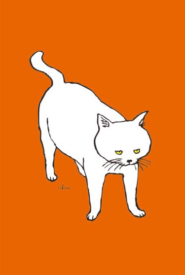にらむ白猫