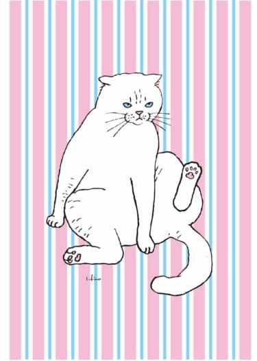 よっこらしょ猫