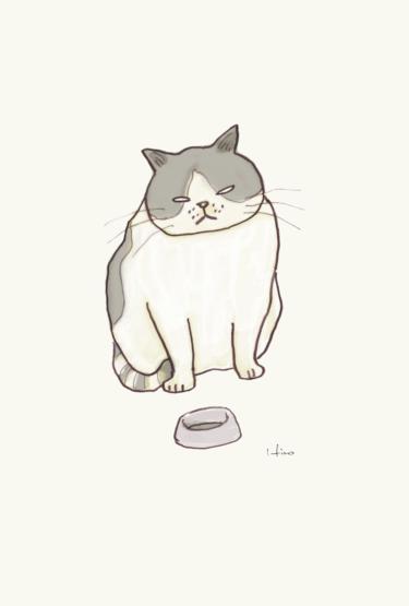 エサくれ猫