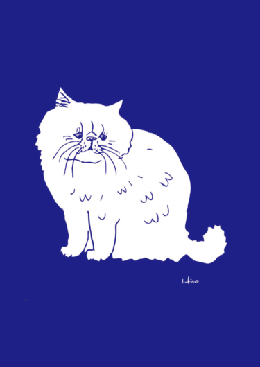 モハモハ猫