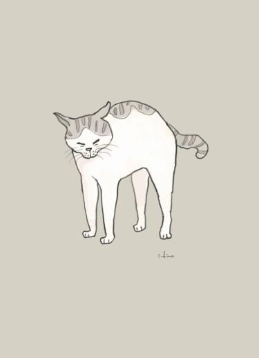 伸び伸び猫