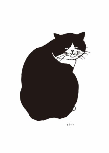 背中丸め猫