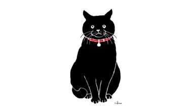 黒猫しゃん