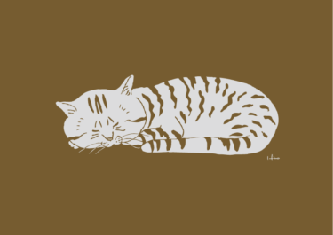 寝るシマ猫